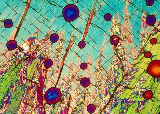 Алкоголь під мікроскопом: 22 фото від bevshots