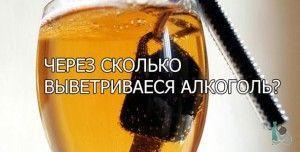 Через скільки виводиться алкоголь
