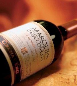 Що з себе являє чилійське вино