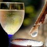 Домашнє шампанське з березового соку