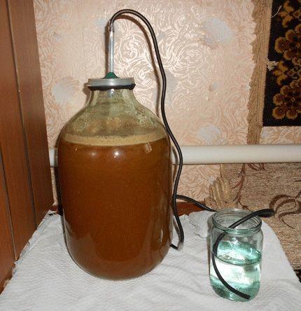 гідрозатвор для вина з білої смородини