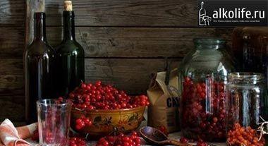вино з червоної смородини фото
