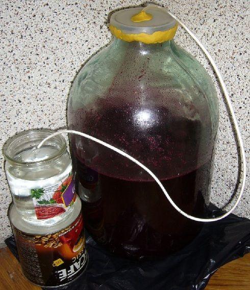 домашнє вино з жимолості під гідрозатворів