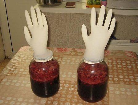 вино з жимолості під рукавичкою