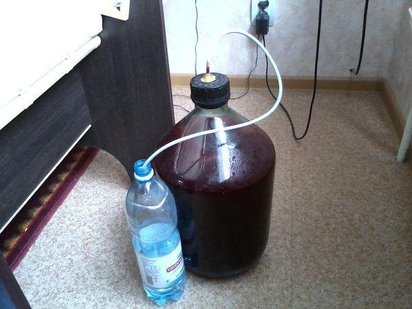 приготування смородинового вина