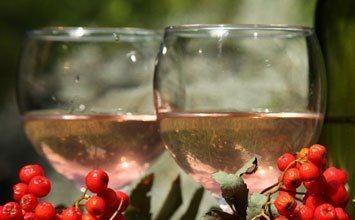 вино з червоної горобини фото