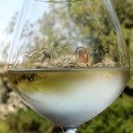 Гевюрцтраминер (gewurztraminer) - ароматне біле вино з ельзасу