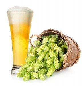 З яких інгредієнтів роблять пиво