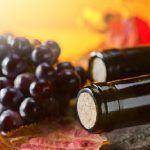 Каберне совіньон (cabernet sauvignon) - вина, які у всіх на слуху
