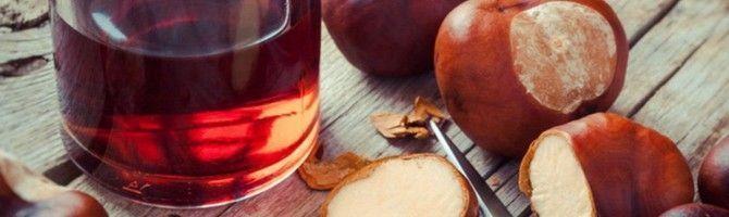Як готується настоянка каштана на горілці і від чого вона допомагає?
