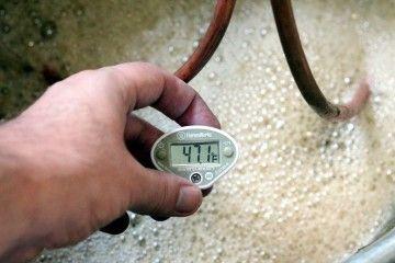 Як правильно приготувати брагу або правильна температура для бродіння