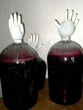 бродіння виноградного вина
