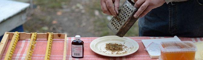 Як приготувати настоянку прополісу і як правильно полоскати їй горло?