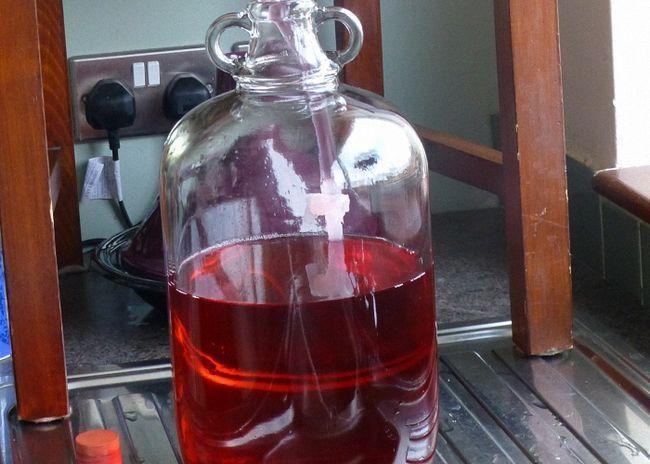 Вино з червоної смородини з коньяком ставимо для бродіння