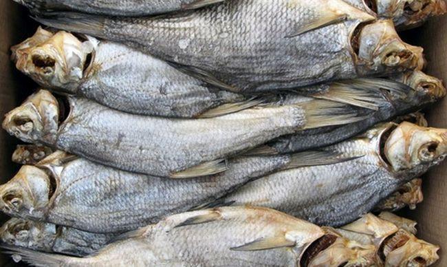 Чим корисна риба?
