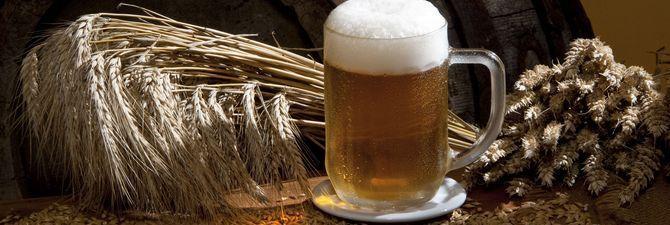 Яке обладнання для виробництва пива необхідно пивоварові