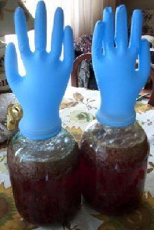 журавлинне вино під рукавичкою