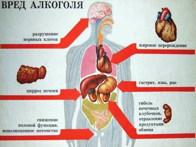 Коли різко кидаєш пити алкоголь, що відбувається з організмом?