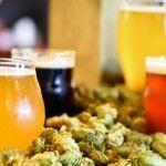 Крафтового пиво: коли мистецтво важливіше прибутку