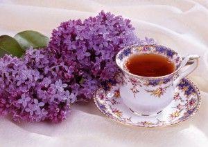 чай з бузку