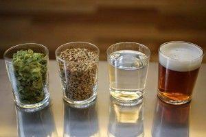 пивні інгредієнти