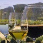 Освітлення (очищення) домашнього вина - 8 ефективних методів