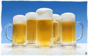 Пиво в гуртках