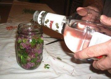 Приготування і застосування настоянок на горілці