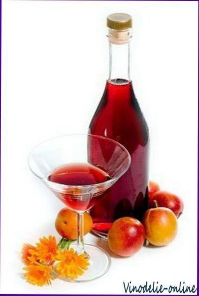 Приготування плодово-ягідних і виноградних вин в домашніх умовах