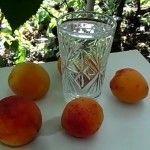 рецепт самогону з абрикос