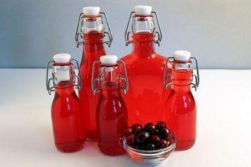 Рецепт настоянки на журавлині. Журавлинна настоянка на самогоні, горілці або спирті