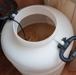 Як без дріжджів зробити брагу з пшениці