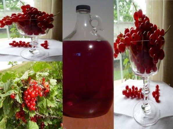порічкове вино
