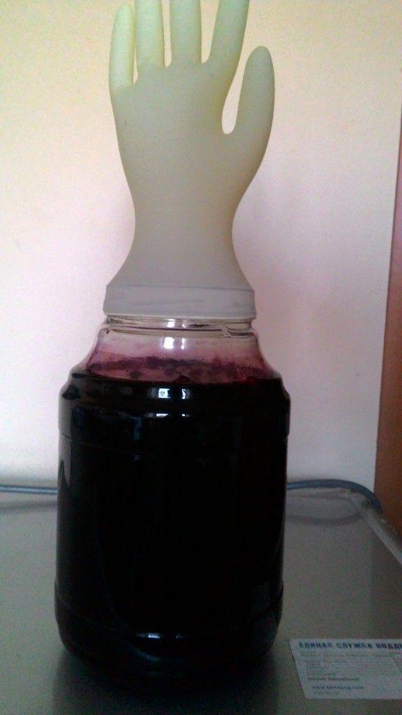 вино з черноплодки під рукавичкою