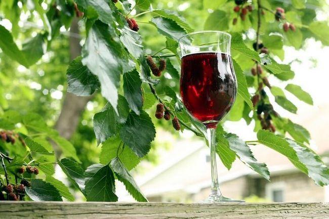Келих з вином з шовковиці на тлі тутового дерева з ягодами.