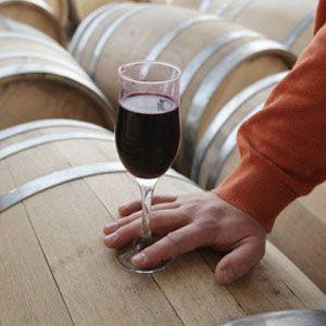 Смак вина як наука
