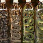 Зміївка (вино або горілка зі змією) - екзотичне спиртне сходу